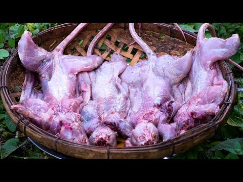 Cook Rats Meat  Recipe, Spicy Rat Food in Village by Kitchen Foods