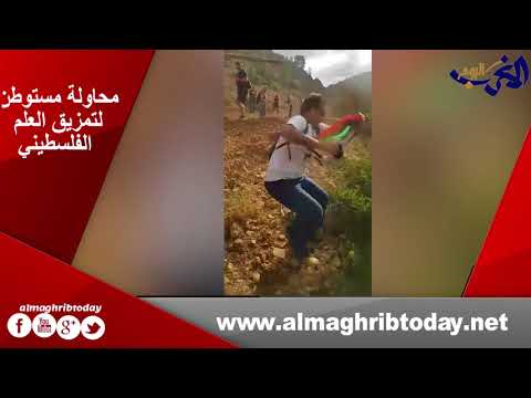 العرب اليوم - شاهد : مستوطن يحاول تمزيق العلم الفلسطيني