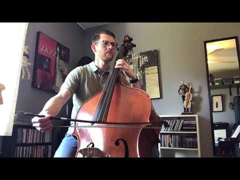 "Irish fiddle tune ""Banish Misfortune"" played on bass"