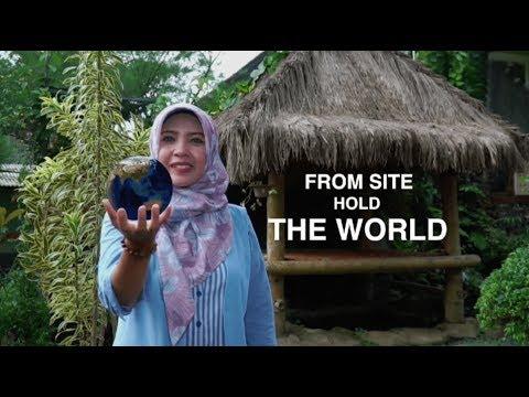 Program Investasi Kehutanan/Forest Investment Program (FIP) Indonesia