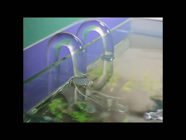 Aquascape Equipment Setup