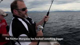 Catching mackerel with Fin-Nor reels [VIDEO]