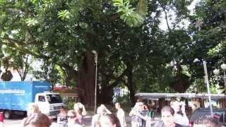 Música Ao Vivo, Downtown Florianópolis, SC, Brasil