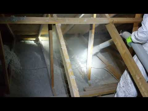 Bats Leave a Mess & We Clean Up & Insulate in Long Branch, NJ