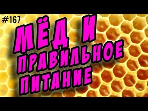 🍯 мёд и правильное питание 🍯