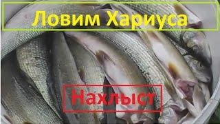 Маршрут для рыбалки по пермскому краю