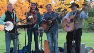 Dogwood Blossom Band