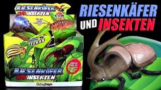 Sbabam ® Riesenkäfer und Insekten - komplettes Display - Unboxing & Review