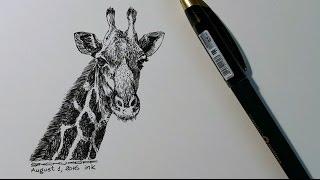 Жираф гелевой ручкой.