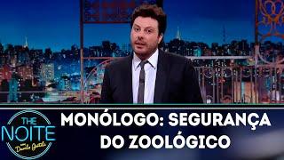 Monólogo: Segurança do zoológico | The Noite (15/10/18)