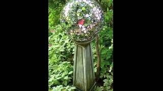 DIY Gazing Ball From Old Bowling Ball