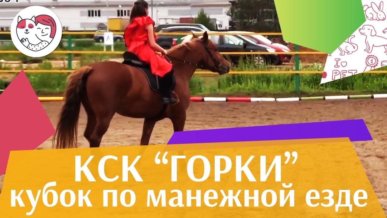 Летний кубок КСК Горки по манежной езде КЮР часть 12 на ilikepet