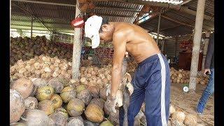 Thánh lột dừa đã lộ diện, bóc vỏ trái dừa đơn giản như bóc trái quýt