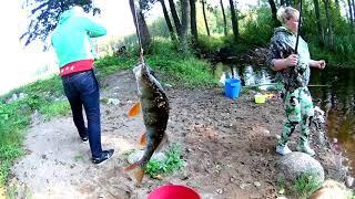 Грибы - рыбалка