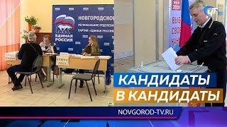 В партии «Единая Россия» подвели предварительные итоги праймериз