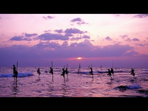 Guide to Luxury Package Holidays to Sri Lanka