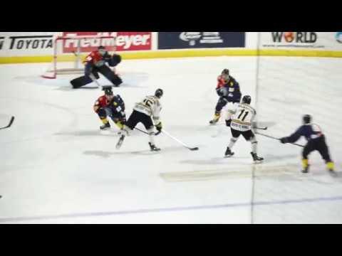 TJ Friedmann Goal Jan 7 2017