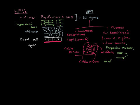 Hpv penile cancer symptoms