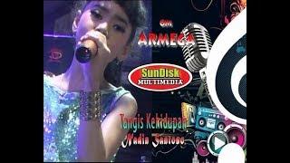 TANGIS KEHIDUPAN = NADIN SANTOSO OM ARMEGA SunDisk Pro Live Driyorejo