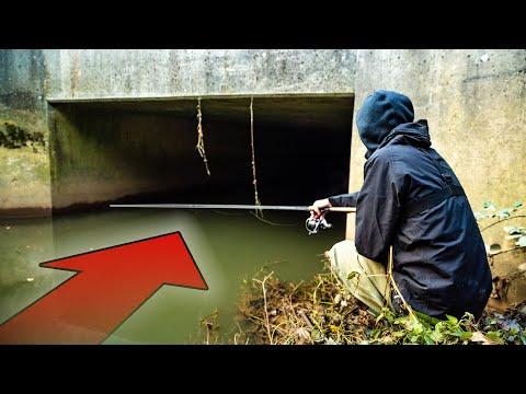 Nye fiskepladser med Carl og Alex