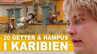 Här visar Hampus Hedström hur man på bästa sätt njuter av årets