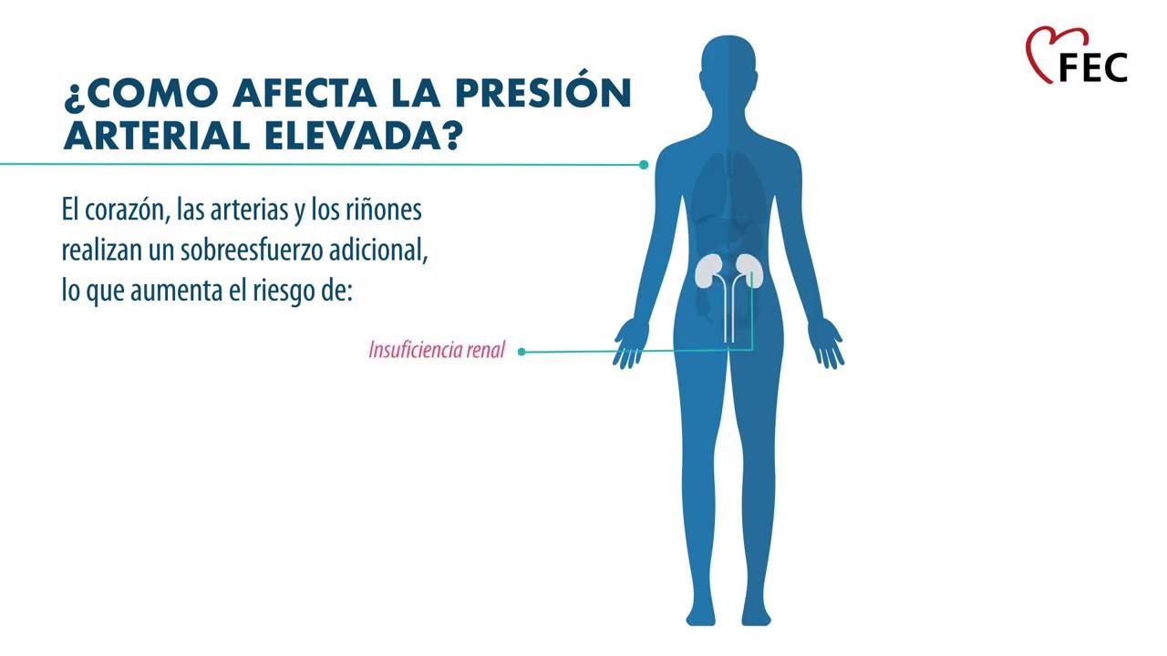 ¿Tienes una presión arterial normal? - Descubriendo caminos