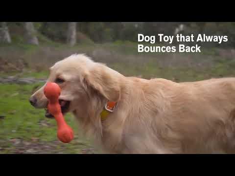 WEST PAW Zogoflex Игрушка для собак Skamp Video #1
