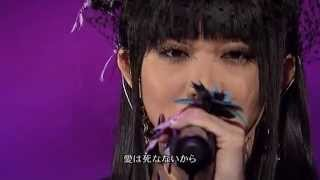 Aishou - 愛証 - proof of love by Koda kumi