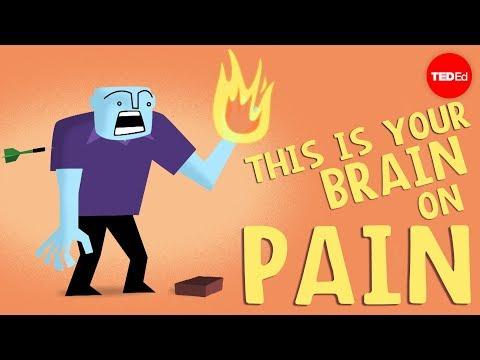 מה קורה למוח שלכם בזמן שאתם מרגישים כאב?