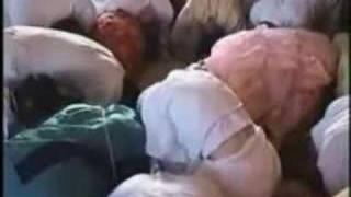 1996 Holland – Dancing with Srila Gurudeva