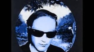 Steve Kilbey - Heliopolis