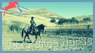 From The Tribe That Bred The Appaloosa: Riding The Nez Perce Horse | DiscoverTheHorse [Episode #30]