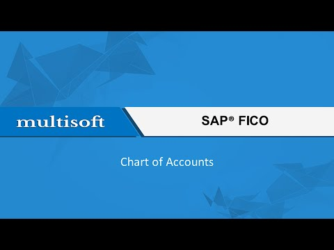 Chart of Accounts in SAP FICO Training