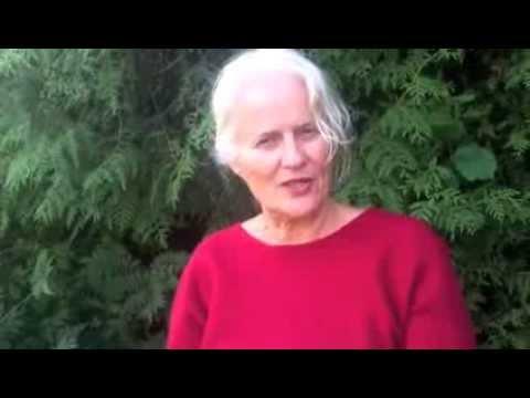 Christine Stafström om Nya Ekonomiska Systemet