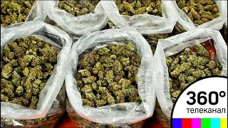 В Мытищах полицейские изъяли у женщины-дилера 8,5 килограмма наркотиков