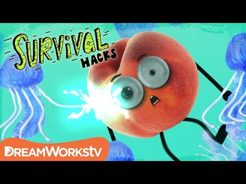 Video Treat a Jellyfish Sting (HINT: Don't Use Pee!!) | SURVIVAL HACKS