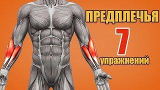 ПРЕДПЛЕЧЬЯ. 7 упражнений. Биомеханика
