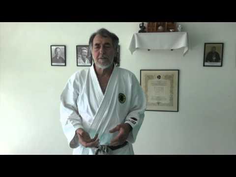 Kyoshi Vitus Bilking interview 1 – Engelsk