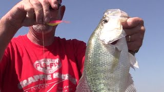 How to Catch BIG CRAPPIE on BIG BAITS!