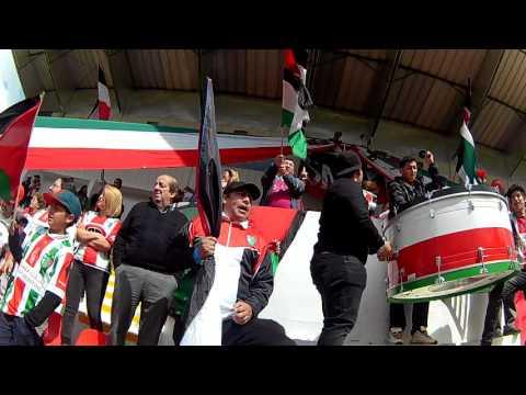 """""""Camellazo - Los Baisanos"""" Barra: Los Baisanos • Club: Club Deportivo Palestino"""