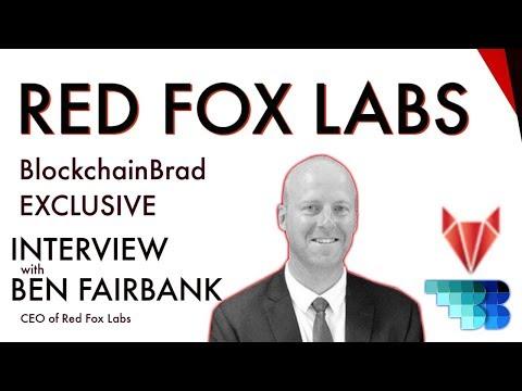 Red Fox Labs | CEO Exclusive | BlockchainBrad | Blockchain Business Accelerator | Venture Builder