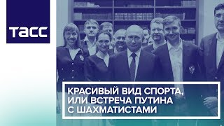 Красивый вид спорта, или Встреча Путина с шахматистами