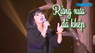 Cẩm Vân xúc động khi hát 'Rừng xưa đã khép'