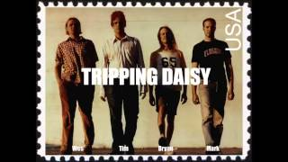 Tripping Daisy - Lost And Found