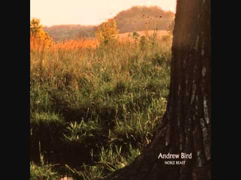 Tenuousness (Song) by Andrew Bird