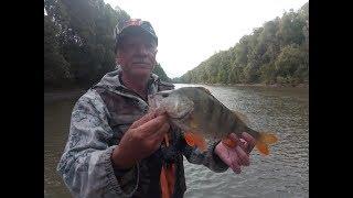 Рыбалка в сузуне новосибирской области