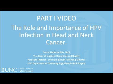 Hpv virus strains 16 18
