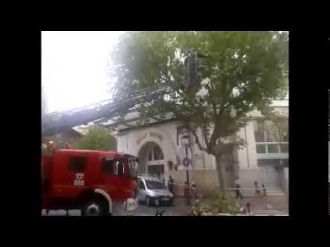 Bomberos de Zaragoza retiran una rama peligrosa.