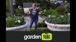 Learn About Formal Gardens