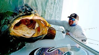 Getting Destroyed by MASSIVE Fish